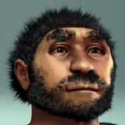 220px-Homo_erectus_pekinensis_-_archeaeological